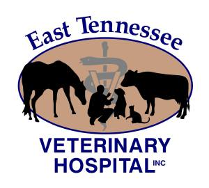 East Tennessee Veterinary Hospital